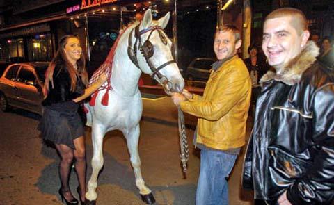 Danijela Vranić получи бял кон за рождения си ден