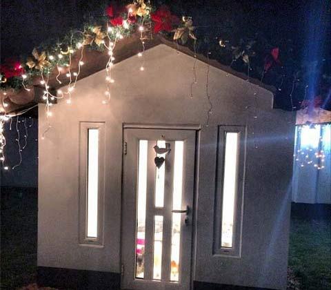 Seka Aleksić построи къща само за кучетата